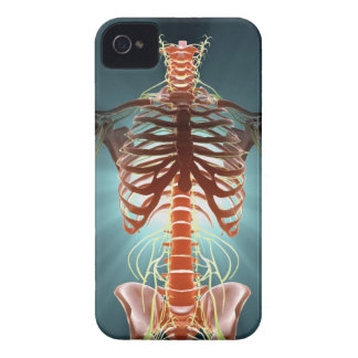 Skeleton and Nerves iPhone 4 Cover