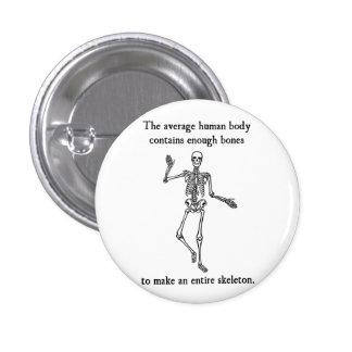 Skeleton Bones in the Average Human Body 3 Cm Round Badge