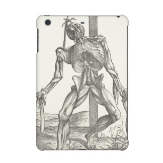 Skeleton Cadaver Anatomy Medical