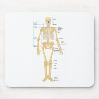 Skeleton Chart Mouse Pad