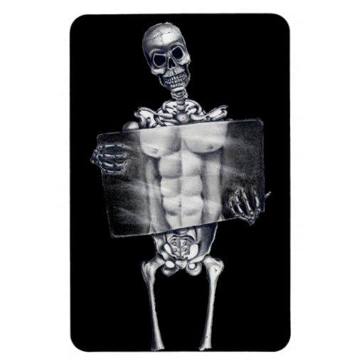 Skeleton Chest Xray Flexible Magnet