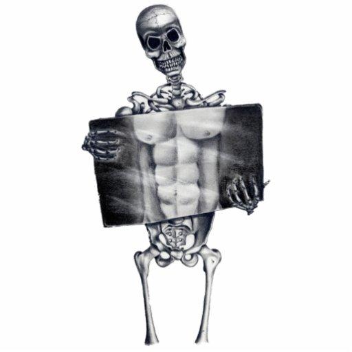 Skeleton Chest Xray Photo Sculpture