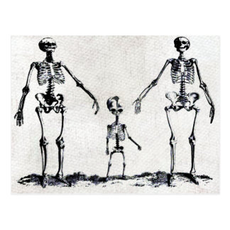 Skeleton Family Postcard