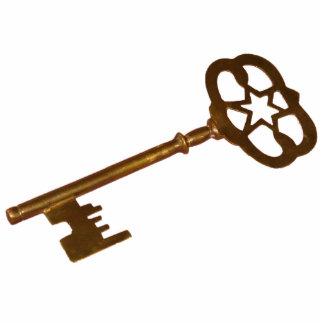 Skeleton Key Magnet Photo Sculpture Magnet