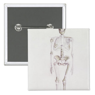 Skeleton of Australopithecus africanus 15 Cm Square Badge