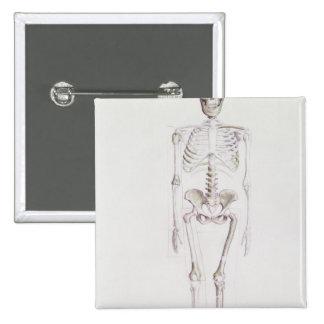 Skeleton of Australopithecus africanus 15 Cm Square Badge