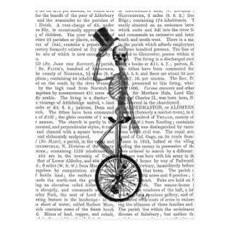 Skeleton on Unicycle Postcard