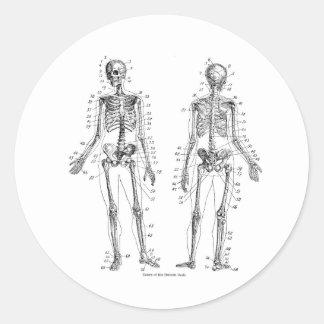 Skeleton Stickers