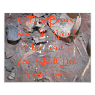 Skeleton with Bible verse O Dry Bones Photograph