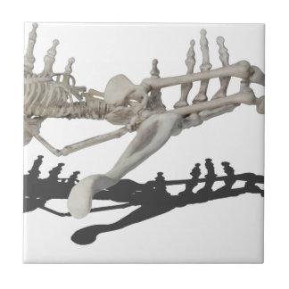 SkeletonHandsHoldingSkeleton081914 copy Small Square Tile