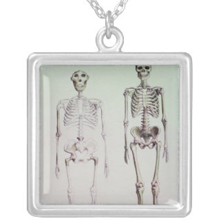 Skeletons of Australopithecus Boisei Silver Plated Necklace