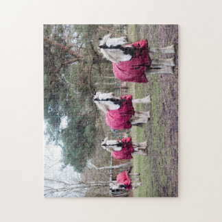 Skewbald coloured Cob Jigsaw Puzzle