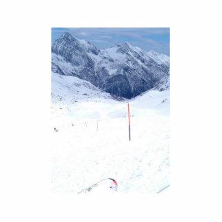 Ski In The Alp Photo Sculpture
