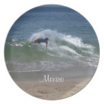 Skimmer Splash; Mexico Souvenir Plates