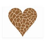 Skin Pattern, Colours of the Giraffe Postcard