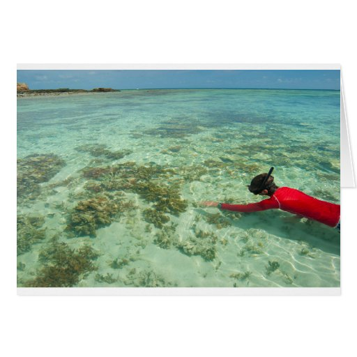 Skindiver swimming in a tropical sea greeting card
