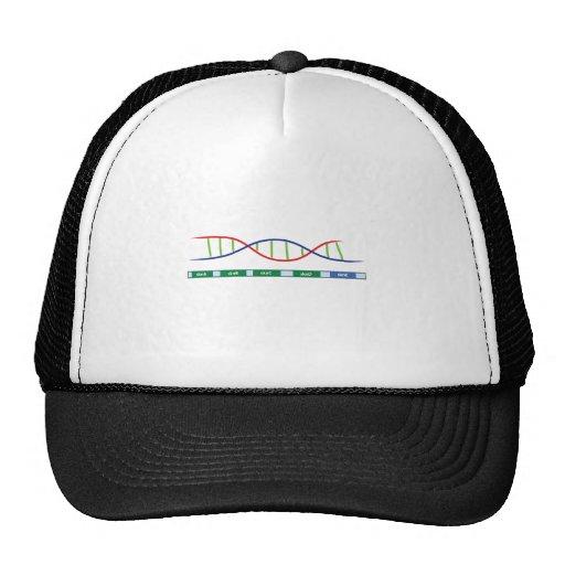 Skinny Genes Hat