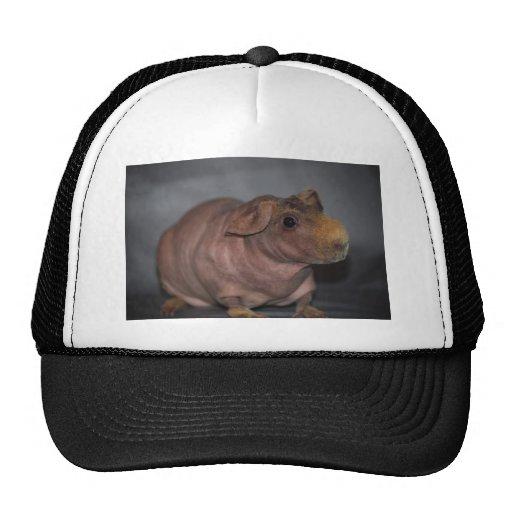 Skinny Pig Hat