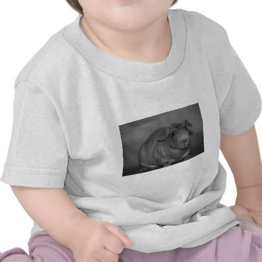 Skinny Pig in black and White T-shirt