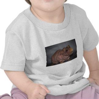 Skinny Pig Tee Shirts