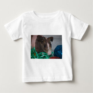Skinny Pig with Easter Eggs Baby T-Shirt
