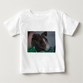 Skinny Pig with Easter Eggs T-shirt