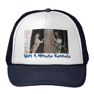 Skip Chase Wait A Minute Kennels - Customized Mesh Hats