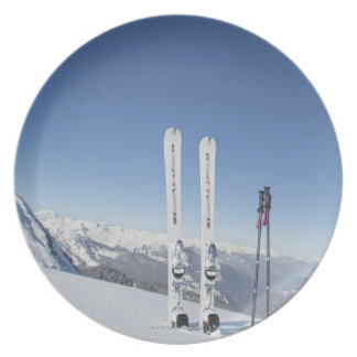 Skis and Ski Poles Plate