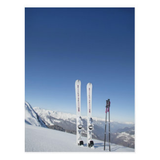 Skis and Ski Poles Postcard