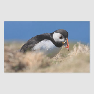 Skomer Island Puffin Stickers