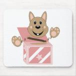 Skrunchkin Rabbit Fudge In Pink Box Mousemats