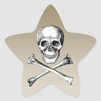 Skull and Cross Bones Grey Star Sticker