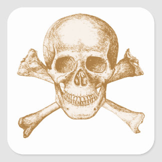 Skull and Cross Bones Square Sticker