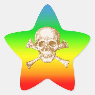 Skull and Cross Bones with Rainbow Star Sticker
