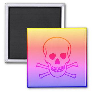 Skull and Crossbones Hazard Ipanema Square Magnet