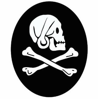 Skull and Crossbones Photo Sculptures