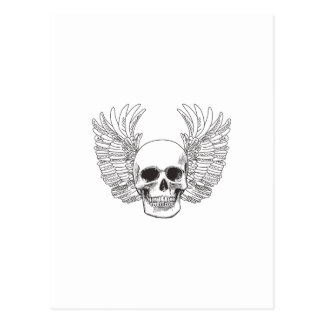 SKULL AND WINGS OPEN POSTCARDS