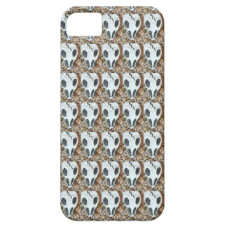 skull case iPhone 5 covers