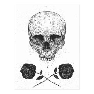 Skull N' Roses Postcard