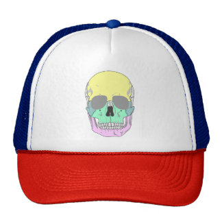 SKULL (POP ART STYLE ILLUSTRATION) Trucker Hat