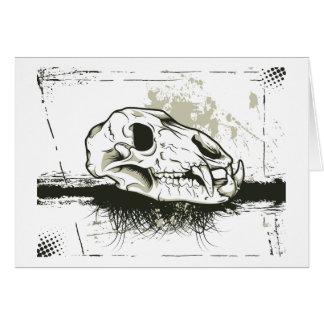 Skull Skulls Animal Skeleton Cards