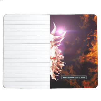 Skulls surrounded by fire and flames journal