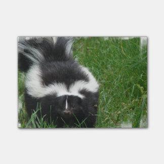 skunk-2 post-it® notes
