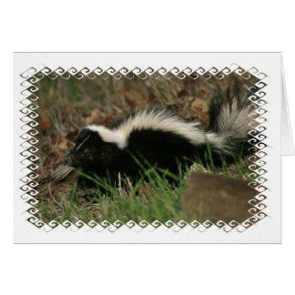 Skunk Behavior  Greeting Card