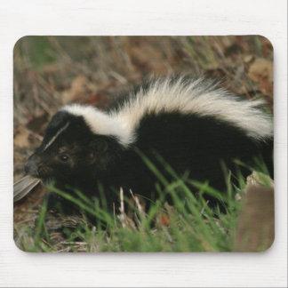Skunk Behavior  Mouse Pad