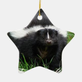 Skunk Photo Ornament