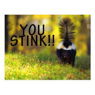 Skunk You Stink Postcard