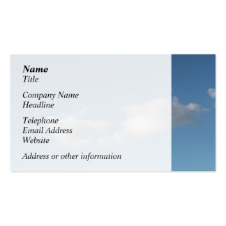 Sky and Clouds. Double-Sided Standard Business Cards (Pack Of 100)