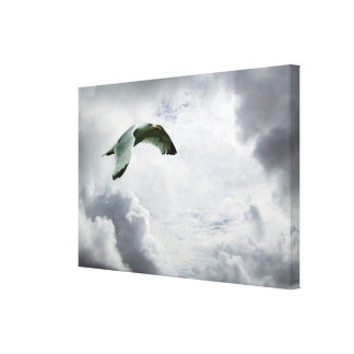 Sky bird flying in heavenly clouds. canvas prints