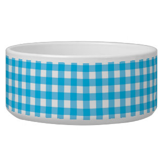 Sky Blue and White Gingham